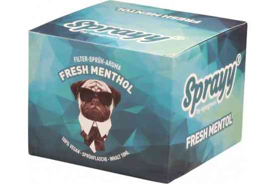 SPRAYY® Fresh Menthol Spray für Zigaretten in der VE 10x10ml