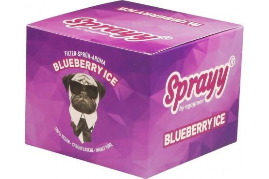 SPRAYY® Blueberry ICE Spray für Menthol Zigaretten Ersatz in der VE 10x10ml